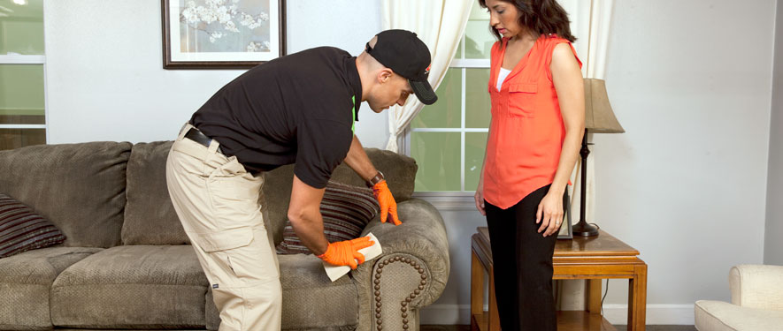 Lewes, DE carpet upholstery cleaning